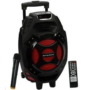 beFree Sound 8 Portable Speaker with USB/SD/MicroSD FM Radio 300W
