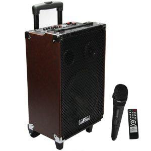 beFree Sound 10 Portable Bluetooth Speaker with USB/SD FM Radio 500W